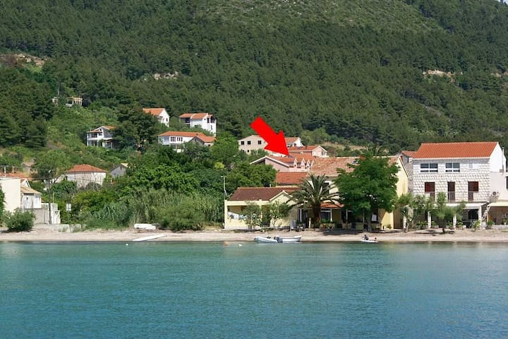 Studio flat with balcony and sea view Žuljana, Pelješac (AS-4576-c) - Žuljana - Other