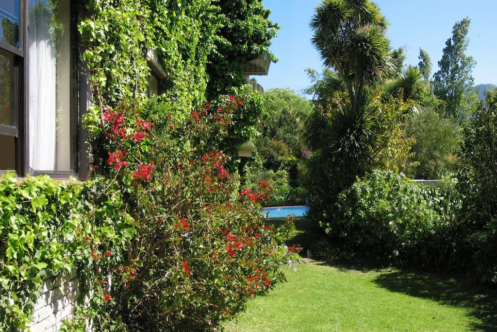 This is the garden, over the fence is the Alphen Trail to Kistenbosch.
