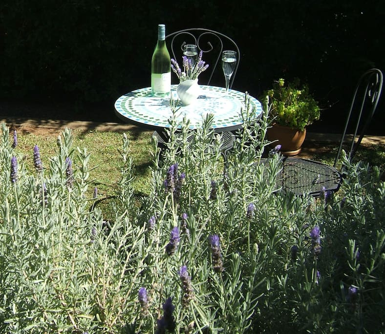 A glass of wine in the private front courtyard amongst the lavender after a day in the sun
