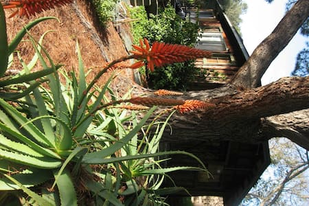 Olive Tree Cabin Quiet & Romantic  - San Luis Obispo
