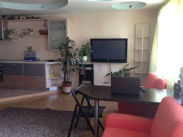 Красивая квартира, все удобства. - Kiev - Flat