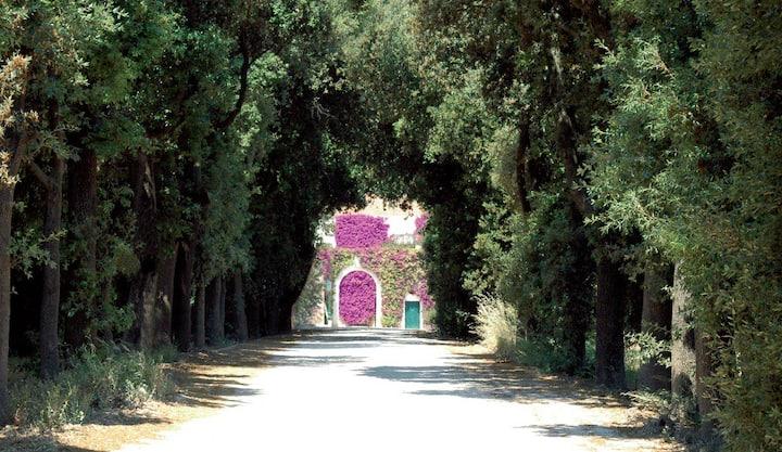 Schinosa Farmhouse since 1647 Trani
