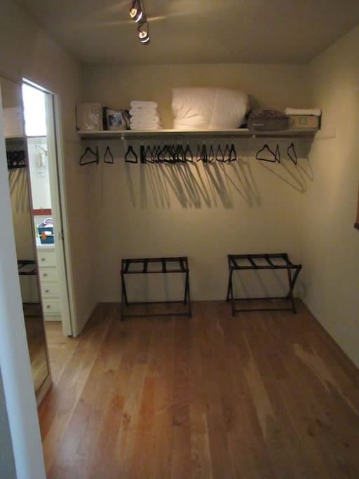 Walk In Closet with Iron and Ironing Board