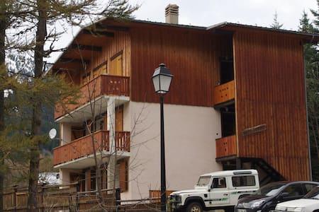 location appt ds chalet indépendant - Pralognan-la-Vanoise - 公寓