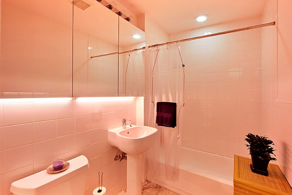 Stylish spacious loft in hip Dumbo!