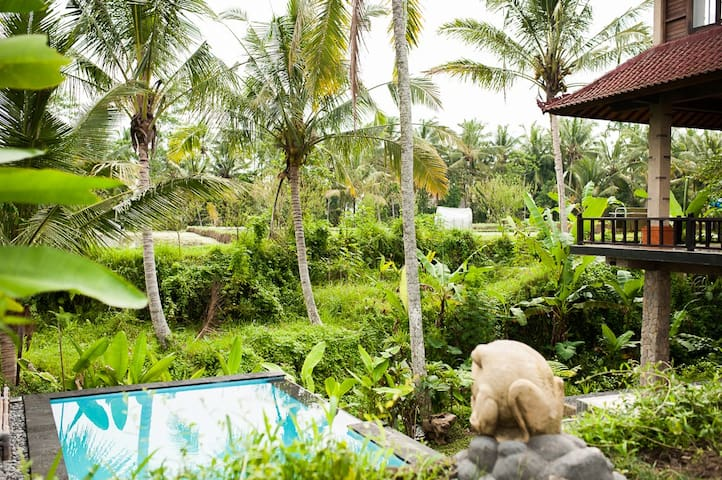 Kishi Awan-sweet,simple,wifi,pool - Ubud - Apartamento
