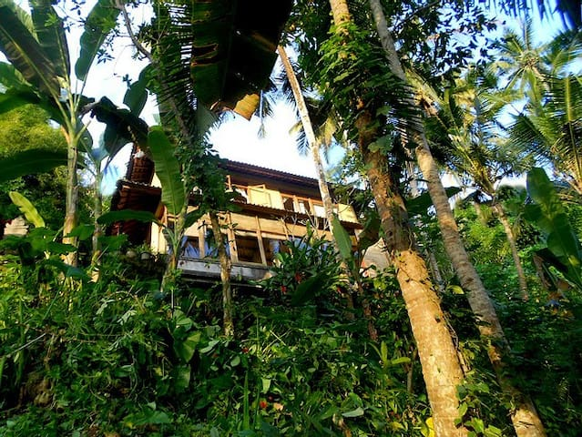 "TREE-TOP LOFT ""JUNGALOW"" RIVER"