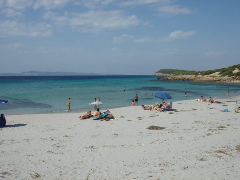 Porto Pineto