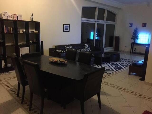 -Bright, Spacious Penthouse Apartment-