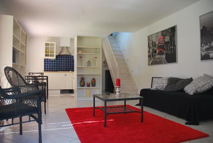 Superbe duplex avec terrasse - Savigny-sur-Orge - Huis