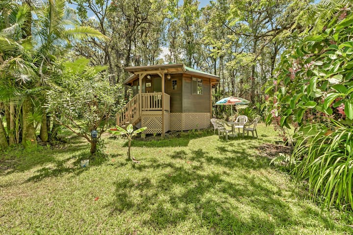 NEW! Secluded Mountain View Studio in Jungle!