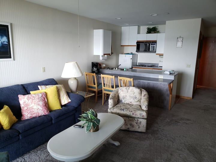 Retro-style Condo with Beautiful Lake View! (109)