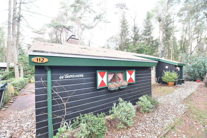Tasteful and nice detached holiday home in the middle of the forest of Giethmen.
