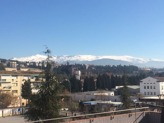 Centro apt with rooftop terrace! - Granada - Appartement