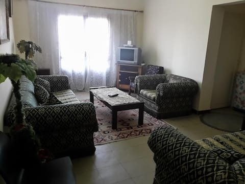 Sunny Excellent apartment in giza, el mohandeseen