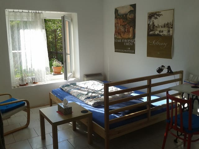 Studio with double bed near the center - Brno - Apartamento