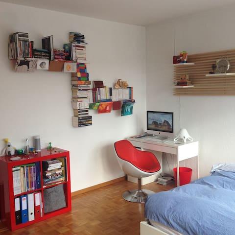 Attic studio with terrace - Geneva - Carouge - Departamento