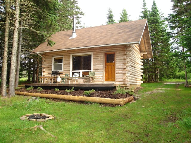 Secluded Spruce Cottage -  hand crafted log cabin