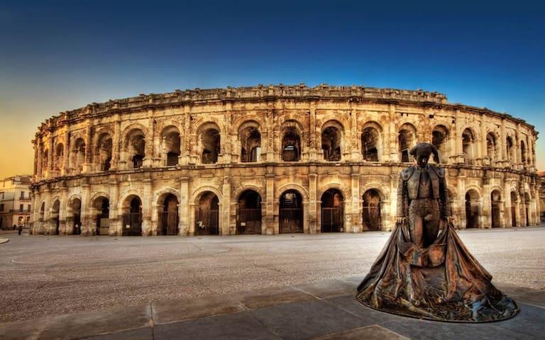 Charmant appartement en plein cœur de Nîmes