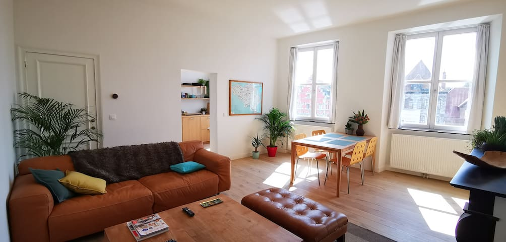 Appartement privatif au bord de l'Escaut à Tournai