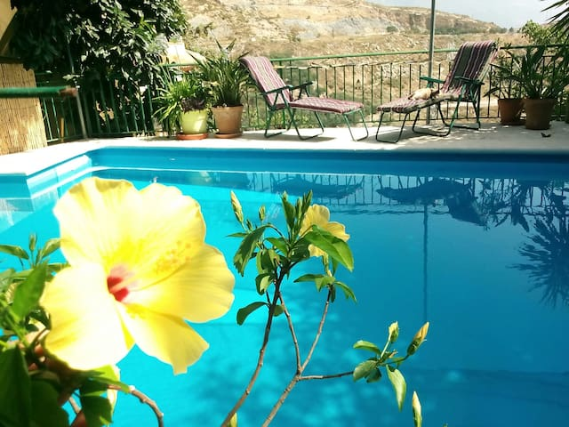 EcoAvocado Hideaway in Old Spa Town - Lanjarón - Bed & Breakfast