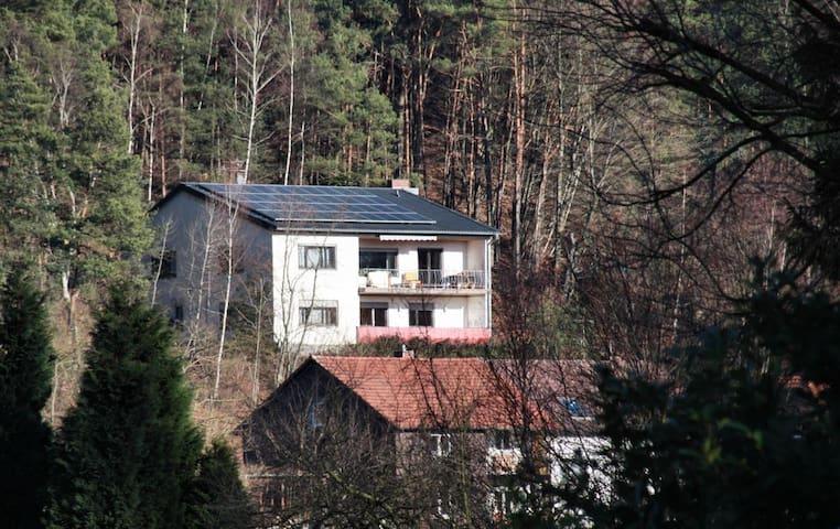 FeWo am Buchenwald [free WiFi]
