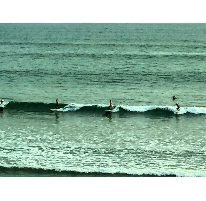 All year round surfing for beginners and intermediates alike