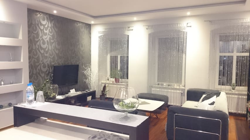 Silver Apartment in the center