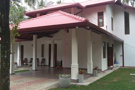 Calm paddy villa