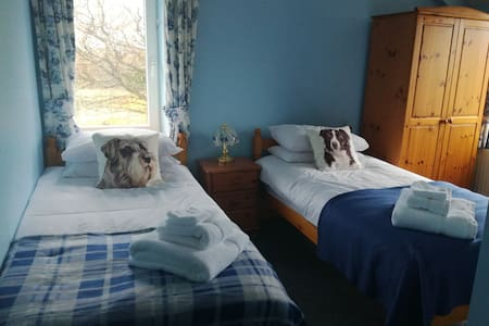 Ty Newydd bed and breakfast - Carmarthenshire - 住宿加早餐