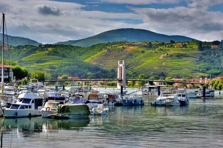 Charmant Studio au bord du Rhône
