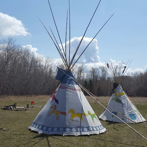 Starry Nights Tipi - Horse Tipi