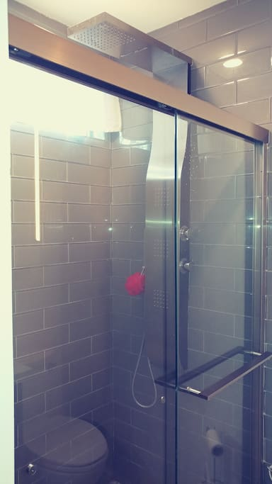 State of the art shower panel.. waterfall, jets and rain