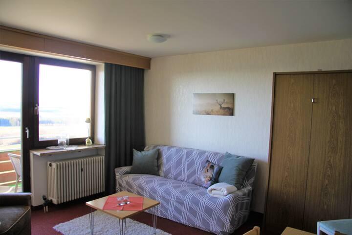 Wohnzimmer mit Sofa, Schrankbett (hier eingeklappt) und Zugang zum Balkon