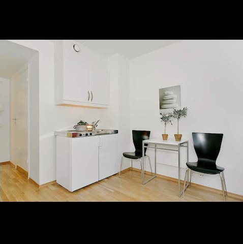 Studio 8 mins walk from Nationaltheatret station