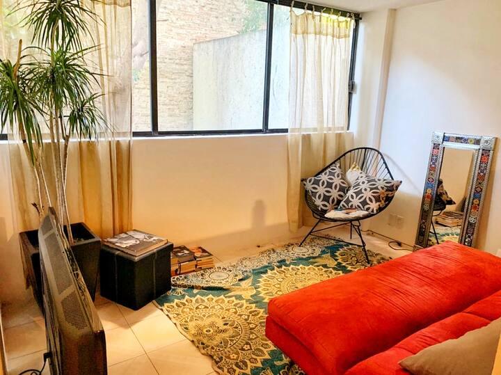 Roma Norte Apartment