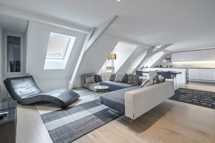 Downtown Penthouse Apartment, including Parking