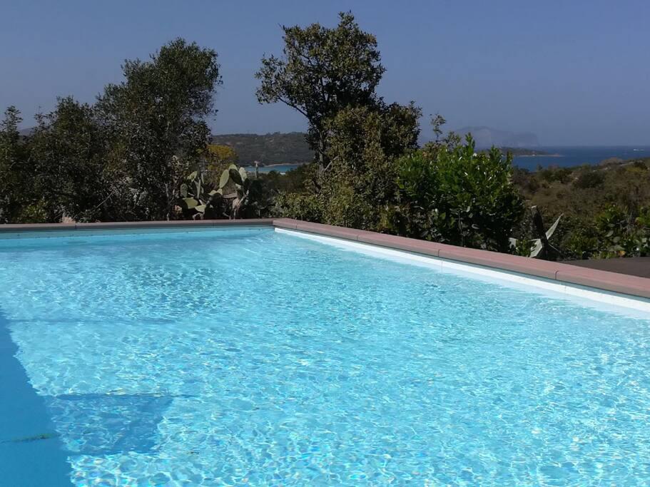 La piscina grande è anchèessa in posizione panoramica ed ha una zona solarium