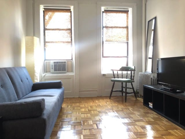 Sunny Practical Apt in Williamsburg BK!!!