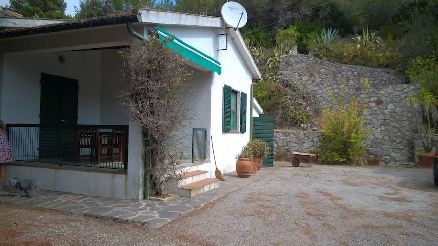 a room in a Mediterranean garden - Marina di Campo - Hus