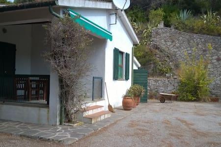 a room in a Mediterranean garden - Marina di Campo