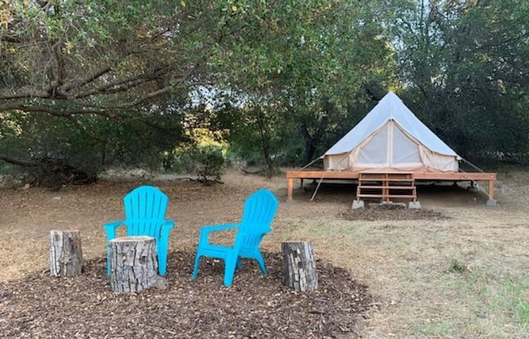 Glamping tent on ranch + wildlife