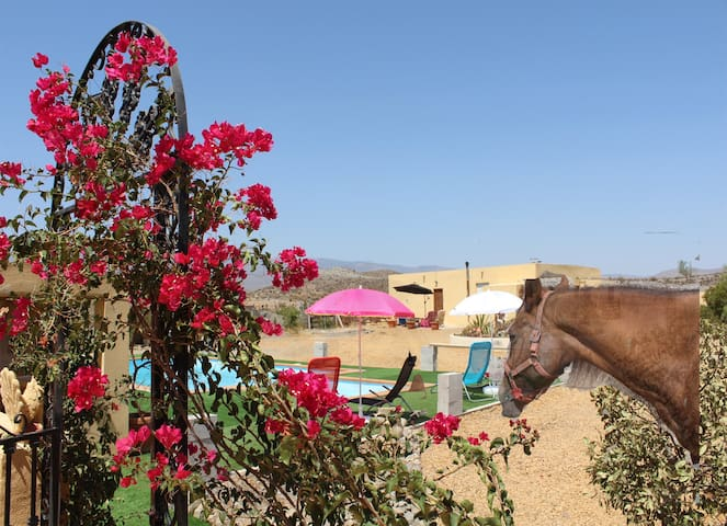 Peace and quiet, views and horses - Tabernas