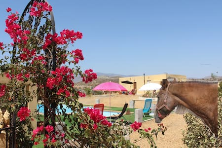 Peace and quiet, views and horses - Tabernas - Apartamento