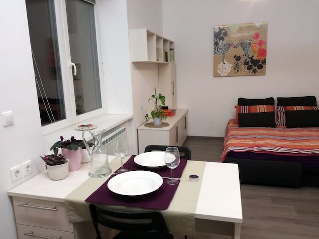 Free parking+Garden,IDEAL city centre location - Ljubljana - Apartemen