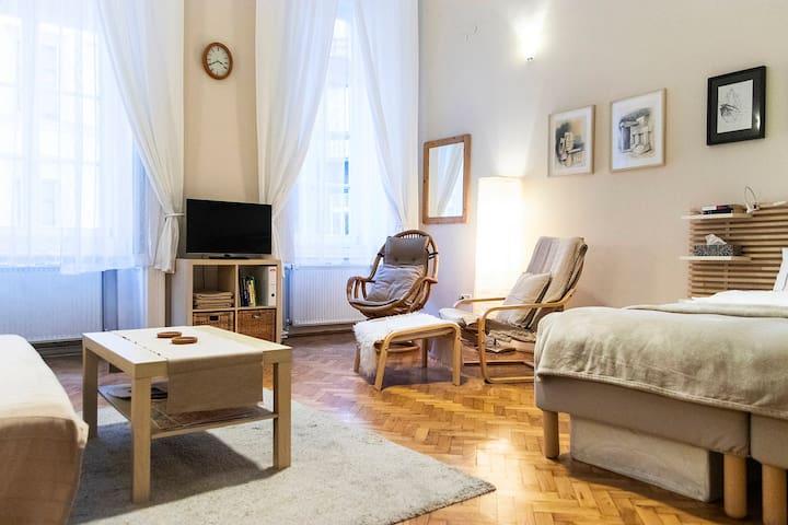 Modern apartement au coeur du village