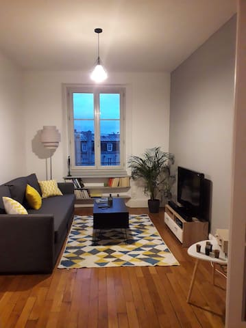 Appartement spacieux et lumineux place Darcy/ Gare