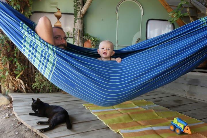 Ilha da Tartaruga for Families