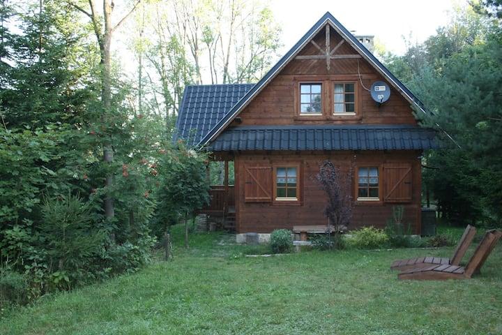 Drewniany dom w górach