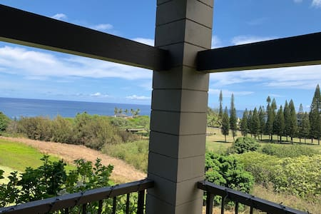 NEW Ocean View Kapalua Ridge Villa Luxury Sleeps 6